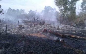 Inilah lahan yang terbakar di Jalan Adonis Samad