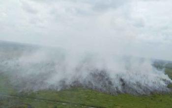 Gambar hasil laporan BNPB setelah dilakukan pemadaman