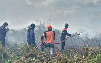 Sejak Agustus hingga pertengahan September 2017, terdapat 48 titik kebakaran hutan dan lahan di Kotim.