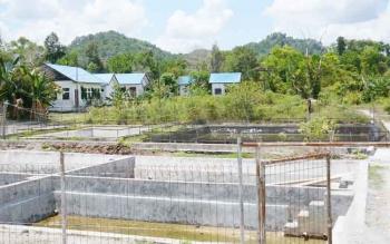Balai Benih Ikan (BBI) binaan Dinas Perikanan Kota Palangka Raya