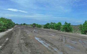 Jalan penghubung antara Kecamatan Pantai Lunci dan Kecamatan Sukamara.