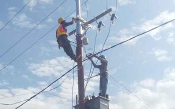 Petugas PLN Sukamara saat melakukan perbaikan jaringan.