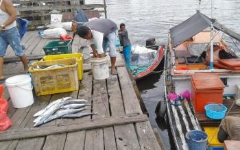 Nelayan di Kecamatan Pantai Lunci, Kabupaten Sukamara.