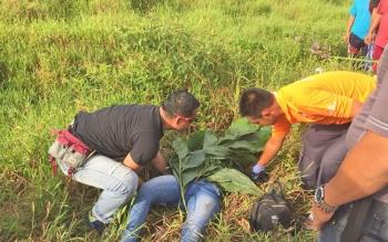 Sesosok mayat perempuan mengenakan baju biru tosca ditemukan tergeletak di Jalan Pramuka, Kecamatan Mentawa Baru Ketapang, Sabtu (14/10/2017) sore sekitar pukul 05.30 WIB..