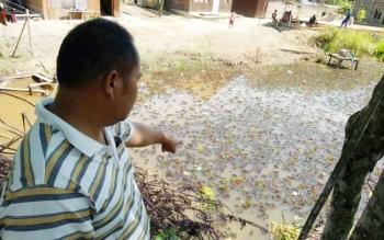Sekretaris RT 02 Kelurahan Kuala Kurun, Kecamatan Kurun, Stubie menunjukan tempat kemunculan buaya.