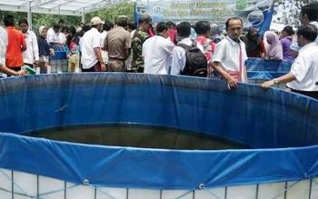 Budidaya ikan lele dengan sistem bioflok di Desa Mantaren II Kecamatan Kahayan Hilir Kabupaten Pulang Pisa
