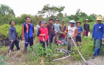 Kebakaran lahan masih terjadi di wilayah Kota Sampit, Kotim.