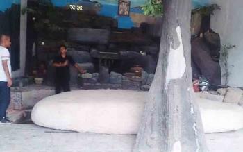 Inilah batu besar berbentuk Labi - Labi yang rencananya bakal dijadikan nama desa pemekaran di Kelurahan Pangkut.