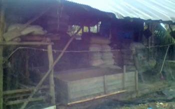 Pabrik pakan patin yang berada dibelakang rumah Gazali, Jalan BPP RT V, Kelurahan Selat Dalam.