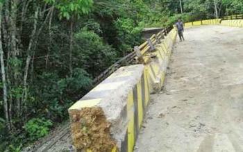 Rindangnya pepohonan dan semak belukar di jalan dari Kota Muara Teweh menuju Kecamatan Lahei membuat jalur itu rawan kecelakaan lalu lintas.