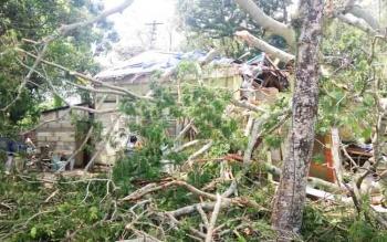 Kondisi rumah warga yang tertimpa pohon tumbang, Jumat (10/11/ 2017).