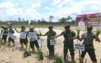 Bupati Bartim Ampera AY Mebas (pojok kiri) bersama para tamu undangan melakukan tanam padi sawah perdana di lahan cetak sawah tahun 2017 di Desa Lebo, Kecamatan Pemarang Karau, Senin (30/10/17)