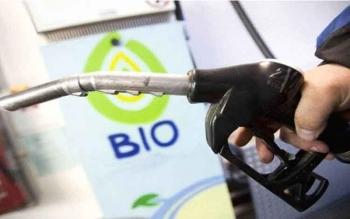 UE Didesak Batalkan Larangan CPO untuk Biofuel Pada 2020