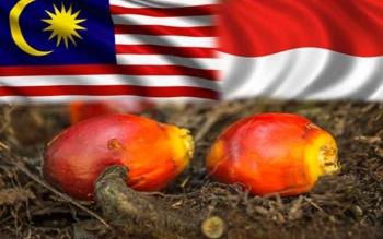 Malaysia Yakin Resolusi Sawit Batal Diterapkan