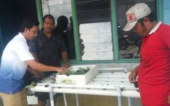 Petugas DLH Kobar dan warga RT 1 Kelurahan Mendawai merakit pipa paralon sarana bercocok tanam hidroponik