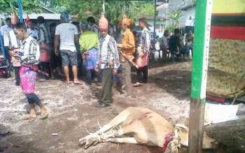 Sejumlah warga Kasongan saat bersiap melaksanakan acara ritual adat Dayak Mamapas Lewu, Rabu (22/11/2017)