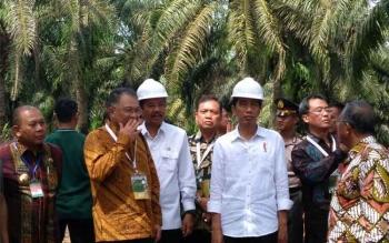 Ketua Umum GAPKI Joko Supriyono mendampingi Presiden Jokowi di acara Program Peremajaan Sawit Rakyat, Serdang Bedagai