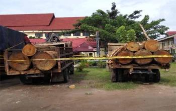 Dua truk bermuatan kayu gelondongannya sudah diamankan di Polda Kalteng, Selasa (28/11/2017)