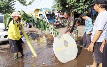 Pohon pisang yang ditanam di tengah jalan sepakat dicabut.