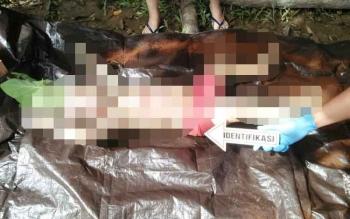 Korban Adelianata (3 tahun) saat ditemukan pasca-tenggelam sejak lima hari lalu.