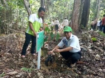 Pemkab Gunung Mas Terus Kembangkan Taman Hutan Raya