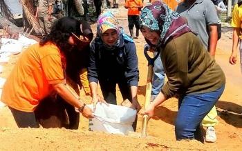 Gotong Royong Atasi Abrasi, Bupati Kobar Dengan Bersemangat Ikut Menyekop Pasir