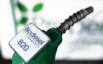 Penundaan Mandatori Biodiesel B30 Tekan Harga CPO