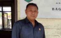 Program Integrasi Sapi - Sawit di Kotim Belum Menunjukkan Hasil