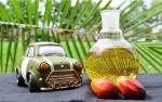 Biodiesel B30 Meluncur Akhir Tahun Ini
