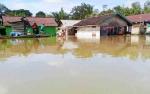 Sudah 559 Rumah Terendam Banjir di 19 Desa Kotawaringin Timur