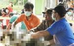 COP Berharap Aparat Ungkap Pelaku Pembantai Orangutan
