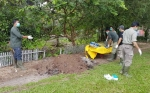 Bangkai Orangutan Tanpa Kepala Dikuburkan di Area BOSF