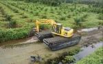 Replanting Sawit 2018 Diawali di Riau