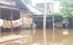 Banjir di Kotim Rendam 1.319 Rumah di 24 Desa