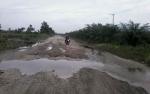 Perusahaan Kelapa Sawit Dituntut Bertanggungjawab atas Kerusakan Jalan Kereng Pangi - Baun Bango