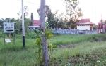 Nasib Tanah Disdik Kotim Kian di Ujung Tanduk