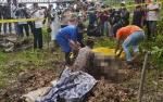Penyebab Kematian Orangutan di Barito Selatan Masih Misterius