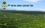 Astra Agro Bangun Pabrik Sawit di Kalimantan Selatao