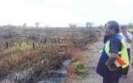 200 Hektare Lahan Warga di Kotawaringin Timur Terbakar