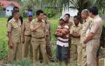 Pemkab Barito Utara akan Tingkatkan Panen Bawang Merah