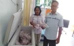 Bulog Kapuas Jual Daging Kerbau Beku Rp80 Ribu per Kg