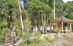 Tanaman Asli Kotawaringin Timur Akan Hiasi Kebun Raya Sampit