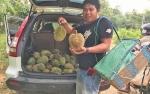 Anggota Dewan Sarankan Desa Nihan Dijadikan Kampung Wisata Durian