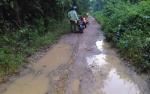 Sudah Saatnya Pemkab Barito Selatan Perbaiki Jalan Gagutur-Sarimbuah