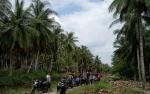 Mulai 2019 Kotawaringin Timur Prioritaskan Pembangunan Jalan dari Kota ke Desa
