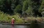 Beginilah Aktivitas Warga Danau Tundai sebagai Nelayan