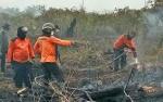 Empat Provinsi Tetapkan Status Siaga Darurat Karhutla