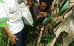 Warga Desa Buntoi Ditangkap Lantaran Miliki Lima Bungkus Sabu