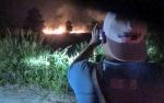 Masyarakat Diimbau Waspada Kebakaran Hutan dan Lahan