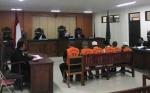 Enam Terdakwa Illegal Logging Divonis 20 Bulan Penjara